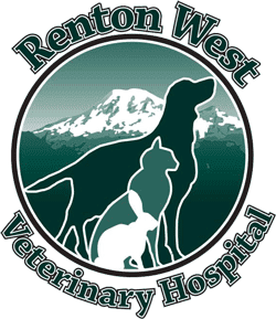 Renton West Veterinary Hospital